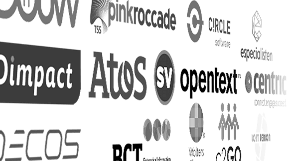 OCW, Dimpact, Atos, Decos, BCT, PinkRoccade, Circle software, Opentext, Centric, C2GO, Lost Lemon, Wolters Kluwer